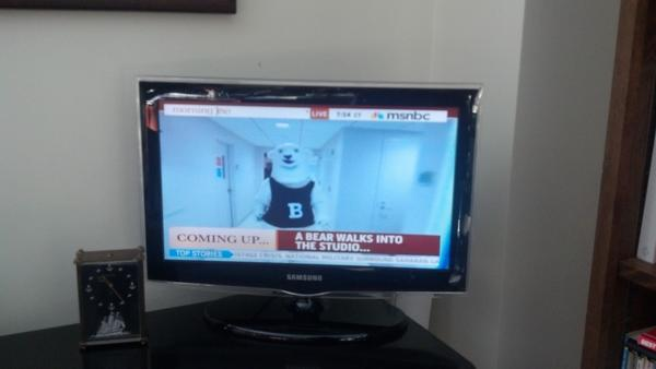 RT @BowdoinCollege: Polar Bear is up next on Morning Joe on MSNBC! #goubears100 http://pic.twitter.com/OMv4HxE1