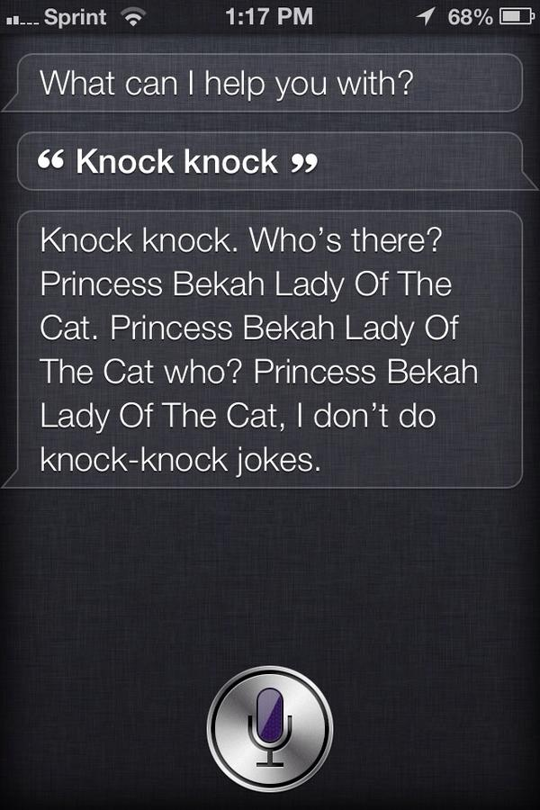 Oh Siri you're so funny http://pic.twitter.com/W5y8C6uZ