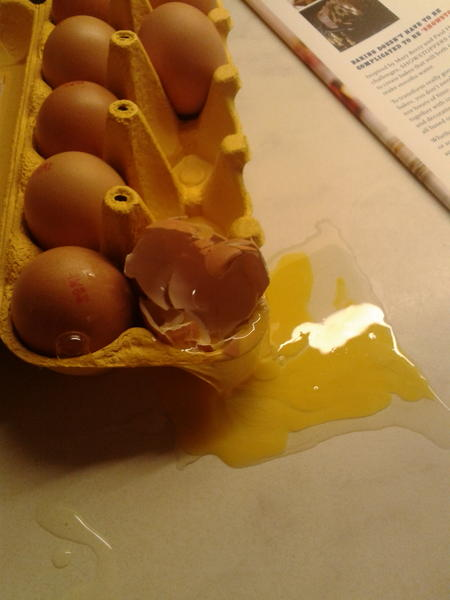 There's been an eggccident http://t.co/ZrPsL9Xq