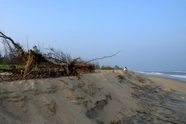 after effects of cyclone on beach in Pondicherry
