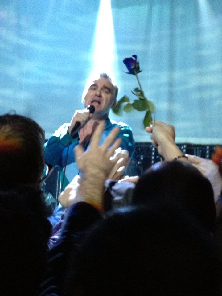 Image result for morrissey blue rose