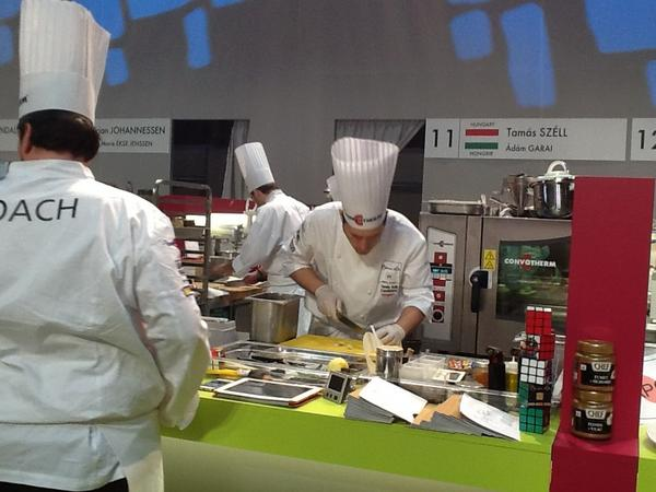 Cheering for Team Hungary at #bocusedor! RT @Bocusedor What about Hungary? Great work going on! http://pic.twitter.com/Fn5mWsVn