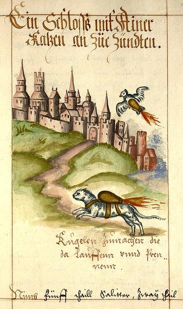 MT @ResObscura Amazing 1584 image of a cat and pigeon strapped with bombs, via @BibliOdyssey. http://pic.twitter.com/orOs5FVT