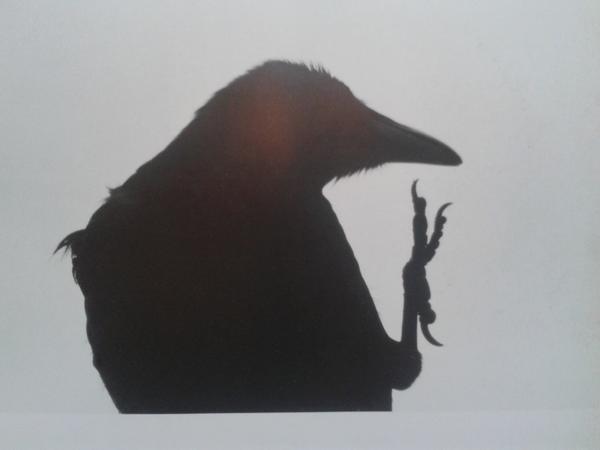 Ravens #bookjockey @BlankPaperESC @gloves4dummies http://t.co/9zR70GiS
