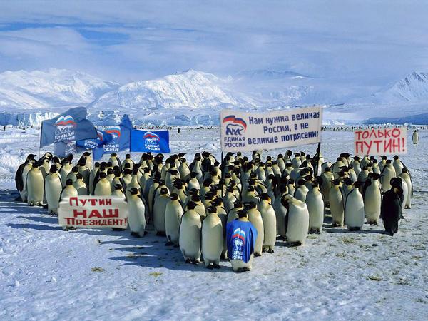 Д.Песков о планах В.Путина: Президент собирается в Антарктиду