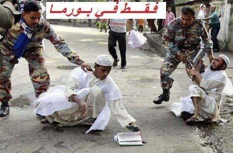 المسلمون في بورما يكتوون بجحيم الحقد والإذلال BCFbtPoCYAIc5rK