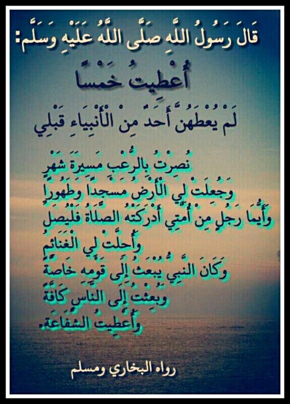 سجلوا حضوركم بالصلاة على محمد وآل محمد - صفحة 28 BCNW-hCCAAAgrFy