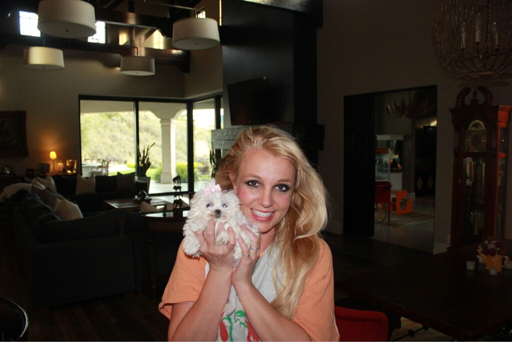Twitter / britneyspears: Say good morning to my new ...