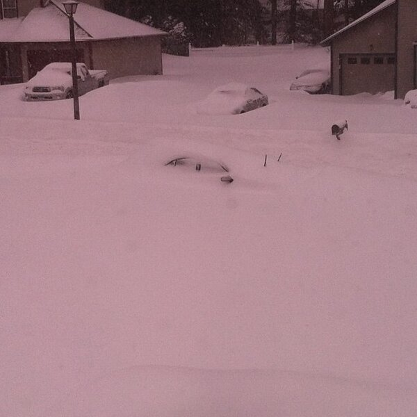 Can you find Tysean Davis' car in the photo?  Look for the windshield wipers as it's buried in Windsor, CT. http://pic.twitter.com/DG4Z3L48