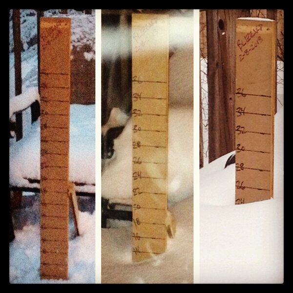 @MTVsammi 25 inches near Boston #nemo #Blizzard2013 http://pic.twitter.com/kppCQmNV
