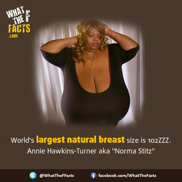 What Are The Largest Natural Breast Sizes 120