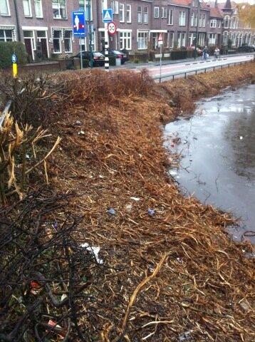 Groenstrook lijkt meer op een vuilstortplaats @woerden http://t.co/BFYr08RJ