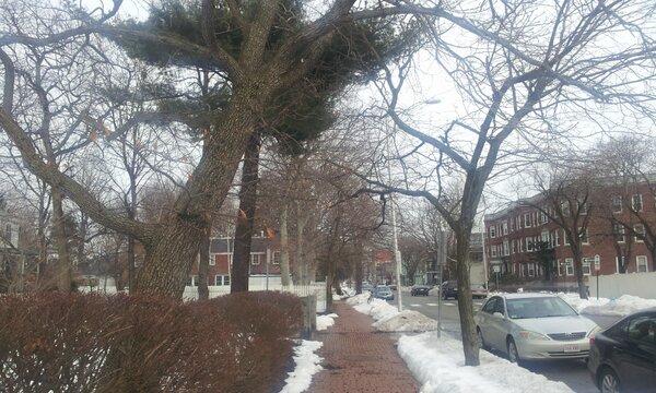 @TE_RUR_ET いまボストンなんですよー。MITに来ております。雪国っす。寒いっす。(-: http://t.co/exUX0DQb