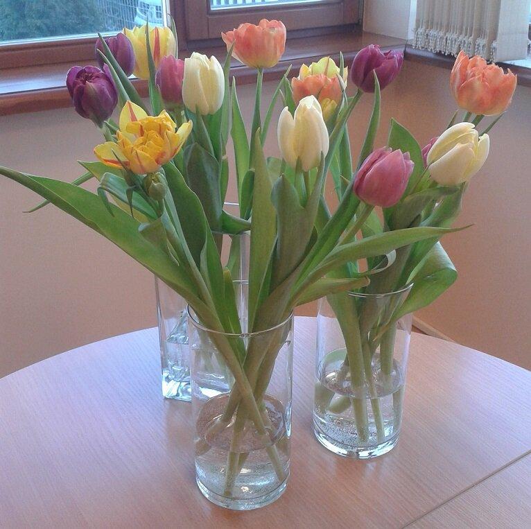Sveiciens Sieviešu dienā visām dāmām! Evisit birojā meitenes šorīt ļoti priecīgas :) http://t.co/hSvv5Ops0q
