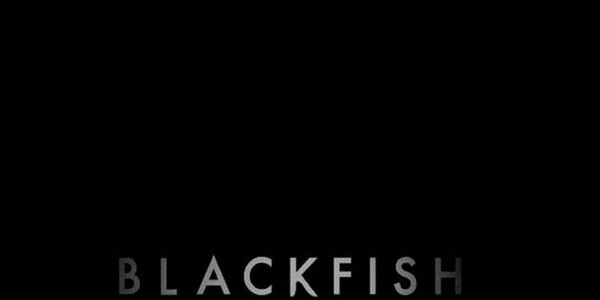 """Jeffrey Ventre on Twitter: """"Cool Header? [goes behind profile pic] // #Blackfish >> @TheOrcaProject @oceanCRIES @OrcaSOS @orcasoutside @Sam10k ..."""