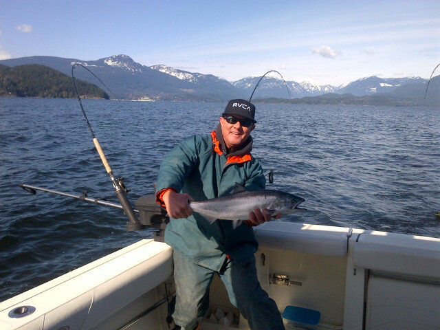 Howe sound winter Spring. Caught on a Silver Horde Irish cream behind a Gibbs highliner flasher