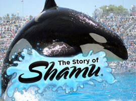 NEW! @SeaWorld @Shamu iReader sample available #FREE 4 a limited time only in the Ruckus app! http://t.co/HqMH1x0fO9 http://t.co/L4LTNF1Xdh