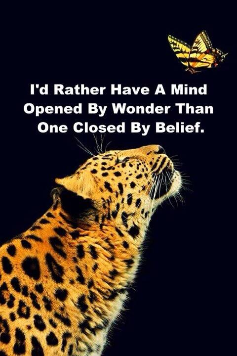 Twitter / JoyAndLife: I'd rather have a mind opened ...