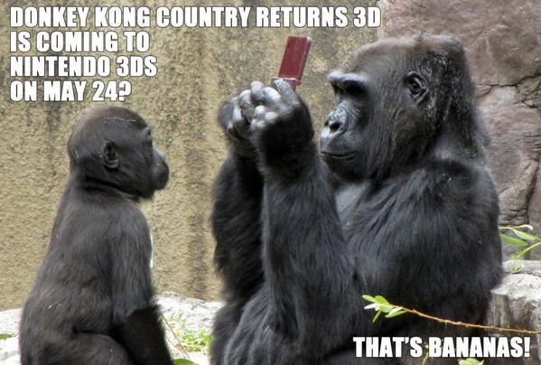 *Update* Donkey Kong Country Returns 3DS release date  BFcEqw3CcAA4zSF