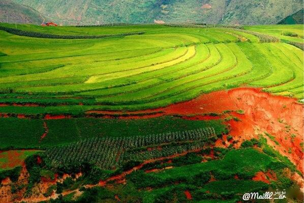 صور أشبه بالخيال لجمال الطبيعه في الريف الصيني