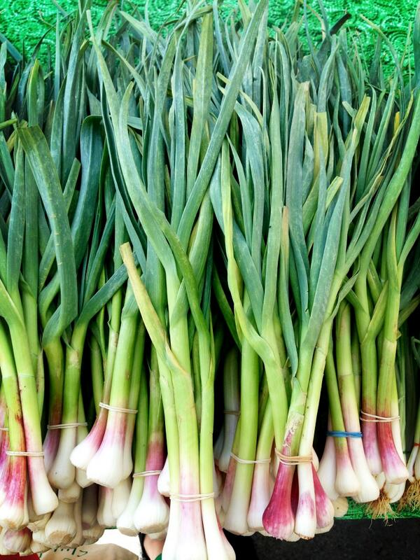 Twitter / clubdinein: I picked up green garlic at ...