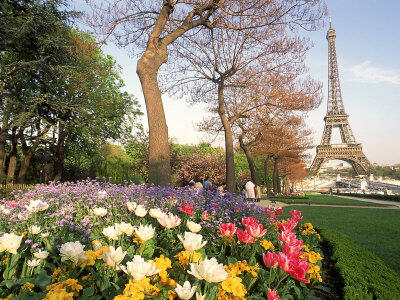 Twitter / KarenDFrancis: Paris in the springtime, I ...