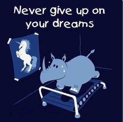 Never give up on your dreams. (Picture of plump rhino on a treadmill with a poster of a studly unicorn hanging on the wall nearby.)