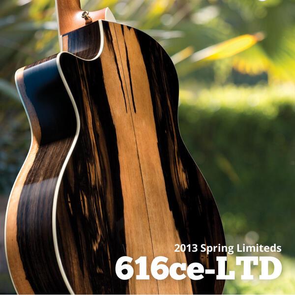 Taylor guitars ebony