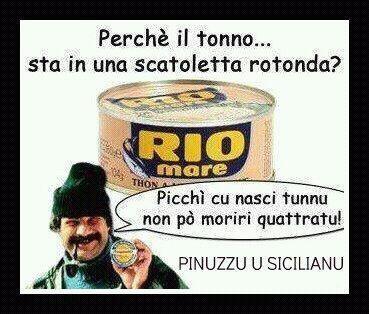 Unknownzh On Twitter Pinuzzu U Siciliano Perche Il
