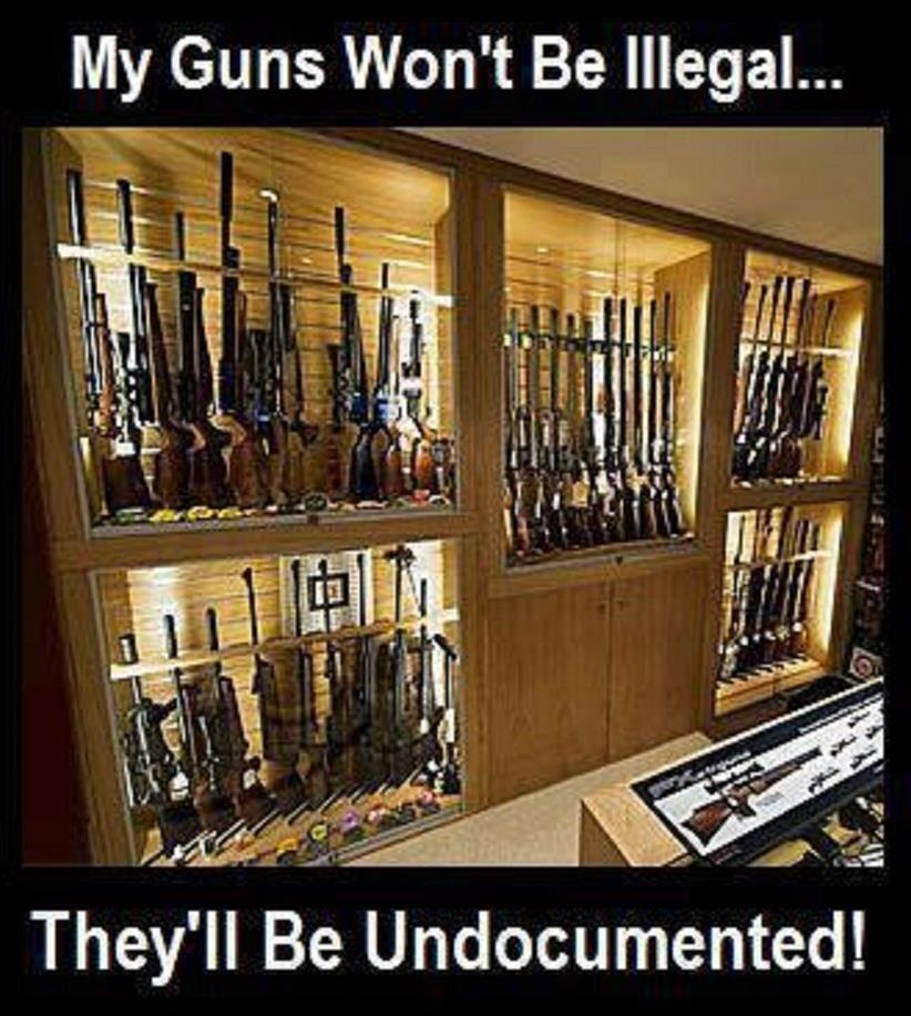Image result for my guns wont be illegal they be undocumented