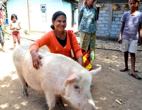 #MDGmomentum:In #TimorLeste,Veronica,a farmer,started business courses 4women 2promote their financial independence http://pic.twitter.com/khuq4ZMzfo