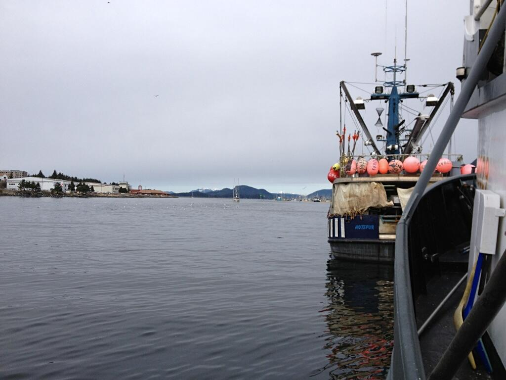 Twitter / JuneauTek: Most of the boats are gone ...