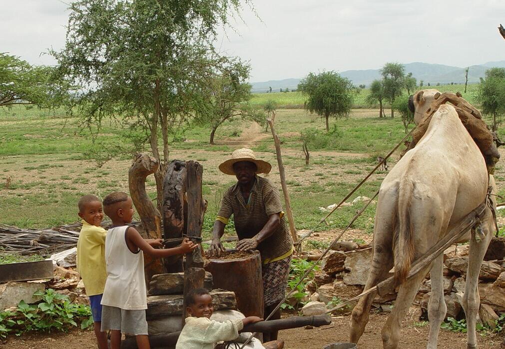 Twitter / JulieMarksUNDP: In Eritrea @UNDP is assisting ...