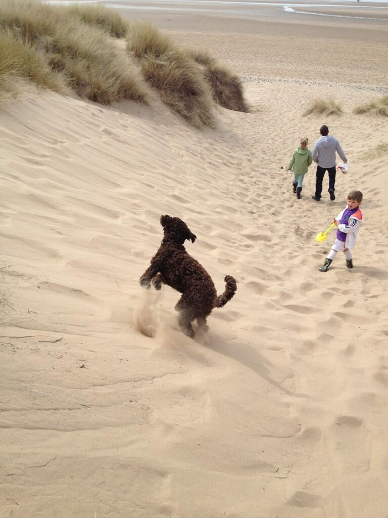 Twitter / PlaceShaper: On the sand dunes at #Lytham ...
