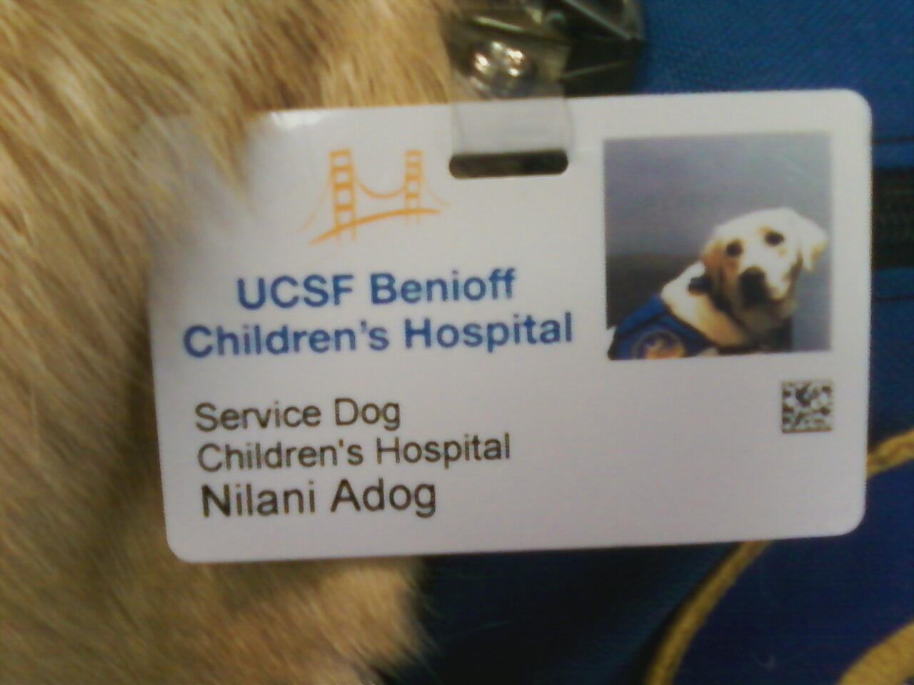 Twitter / UCSF: Meet one of the most influential ...