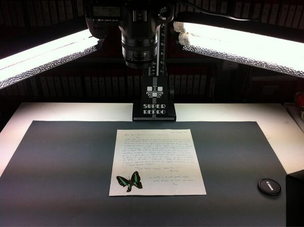 Thumbnail for i progetti dell'archivio dei diari: #improntedigitali