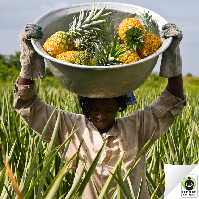 Twitter / FairTradeUSA: #FairTrade Certified pineapples ...