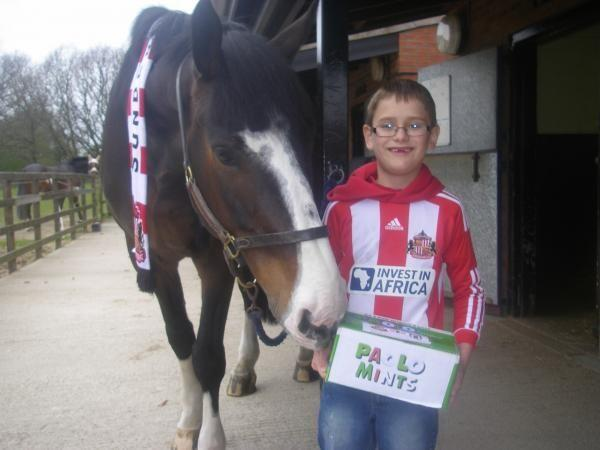 Pictures: Sunderland fans send Paolo Mints to Bud the horse (punched by the Newcastle fan)