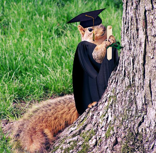 Look 4ward 2 the Walk Across Campus during #wmgrad. Congrats #wm2013. You've made this #squirrel proud! pic.twitter.com/nICcw8fuG1
