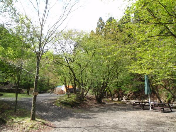 キャンプ ボスコ 【キャンプ場体験記】(神奈川県)ボスコ・オートキャンプ・ベース