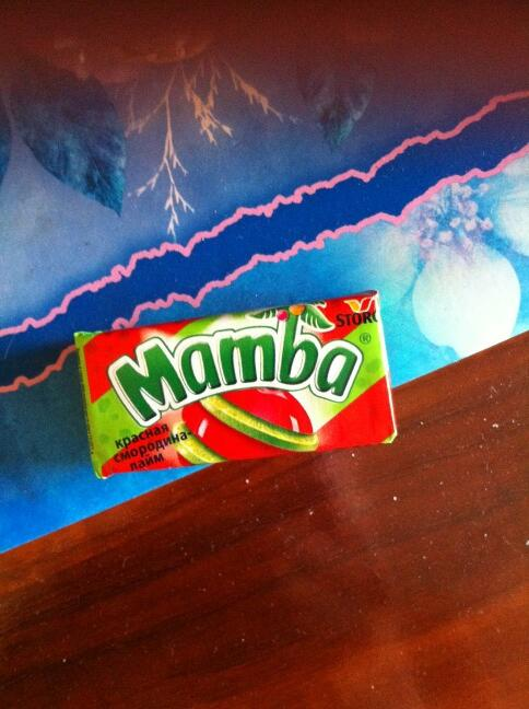 все любят мамбу а мамба никого не любит