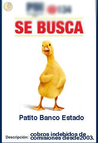 #SeBusca PATITO BANCO ESTADO, Lo siento pero te pasaste!! bit.ly/107vlBo @patobancoestado pic.twitter.com/GfBCmfjjnW