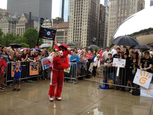 Benny the Bull works the crowd #TodayinChicago pic.twitter.com/5Ng15jVtKc