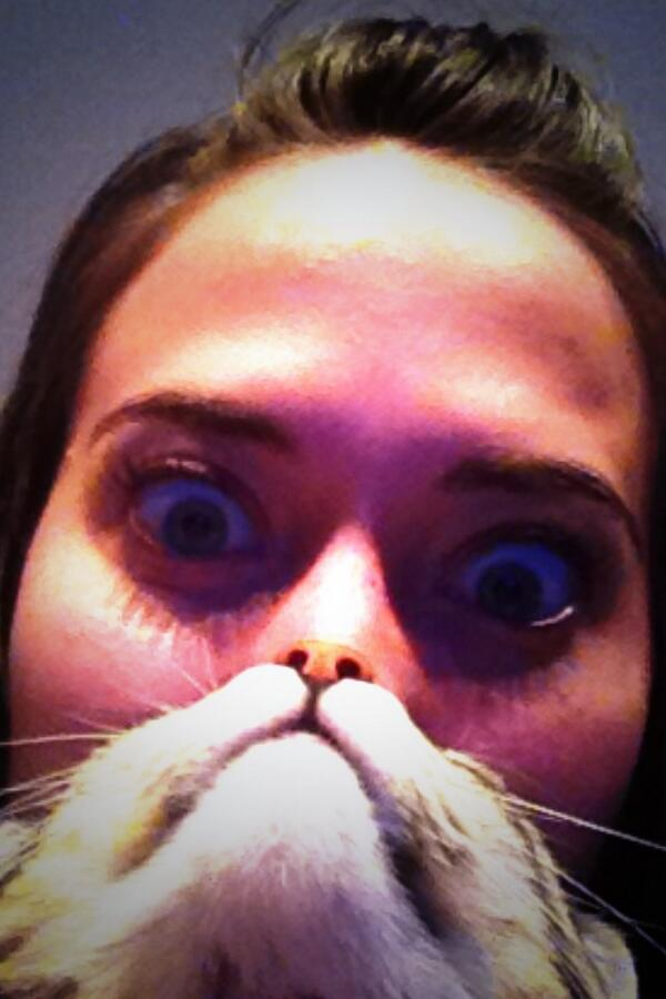 #catbearding #2 #embarrassing pic.twitter.com/ieBfudHApL
