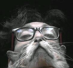 Great #catbeard #catbearding from @cayoiyas                        #lol pic.twitter.com/jsM1eG739C