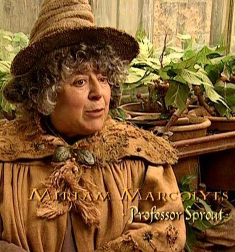 Happybirthdayprofessorsprout Hashtag On Twitter
