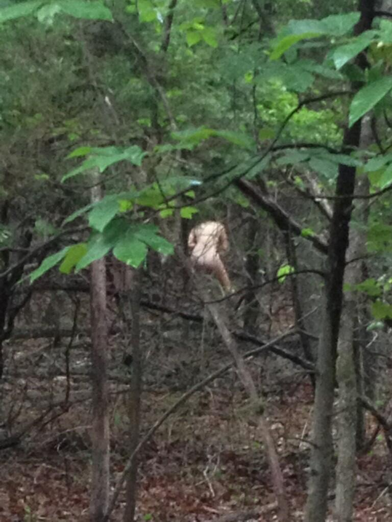 Naked piss in woods