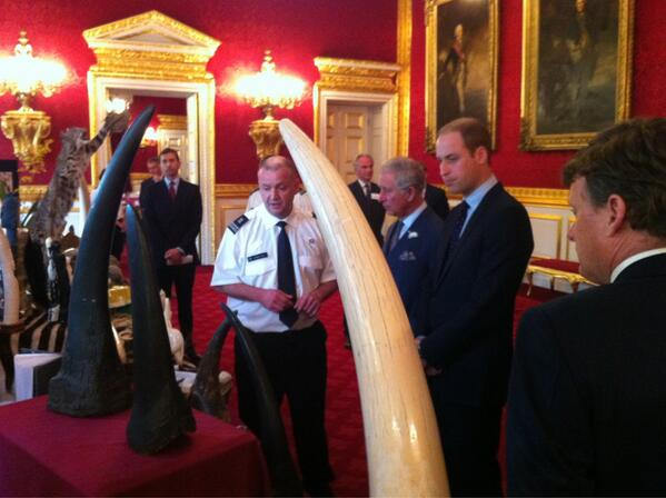 #royal #Charles and #William shown some of the products that result in poaching #endwildlifecrime http://pic.twitter.com/xBVeGZN1El