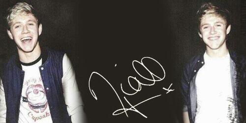 Niall horan twitter header 2013