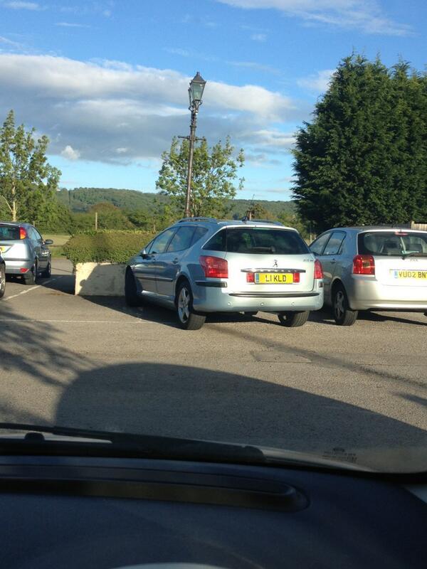 L1 KLD displaying Selfish Parking